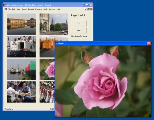 sample screenshot - Continuous Image Forms in Access - Paging - graphic photo picture database samples